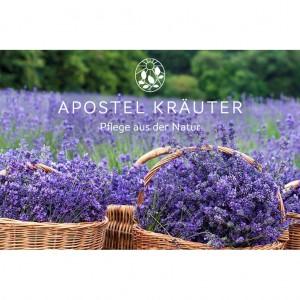 Gutschein-Lavendel
